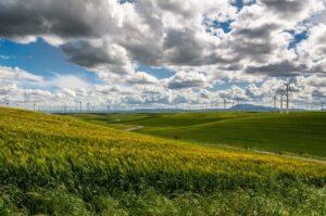 wind farm, wind turbine, electricity