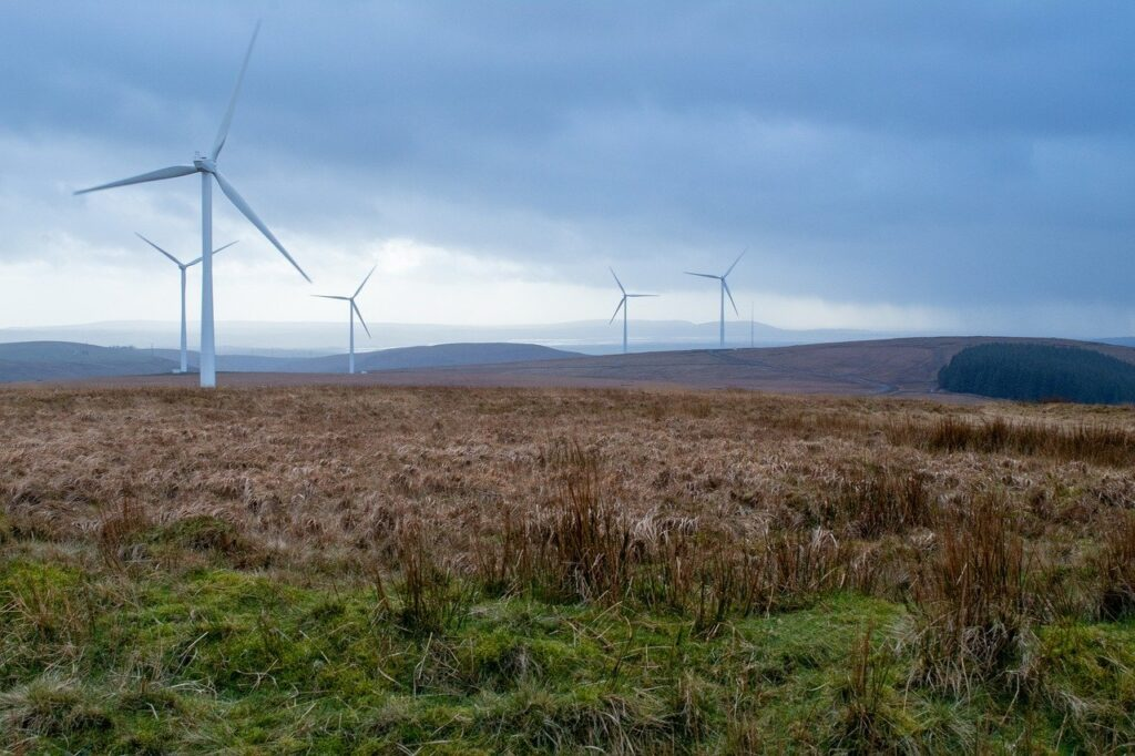 windfarm, wind, turbines